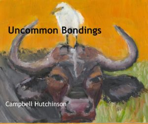 uncommon bondings - artist writer campbell hutchinson